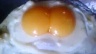 egg rap god (eminem)