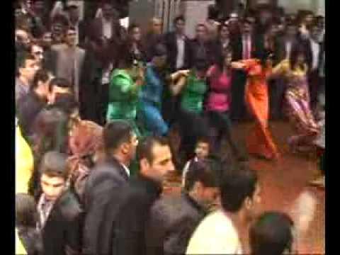 Kürt Süryani Dügünü Belcika Halay Kürtce Dawet Kurdish Wedding Belgium