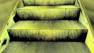 Fuck Art, Let's Dance! - We're Manicals (IRA ATARI RMX)