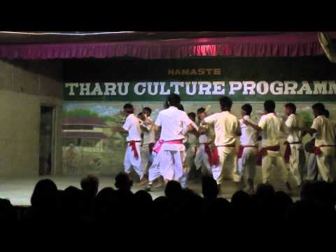 Tharu Culture Dance (part 3)
