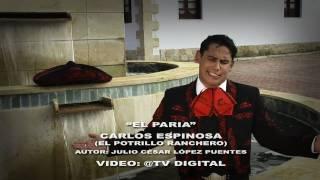 """CARLOS ESPINOSA """"EL POTRILLO RANCHERO"""" - EL PARIA (VIDEO OFICIAL)"""