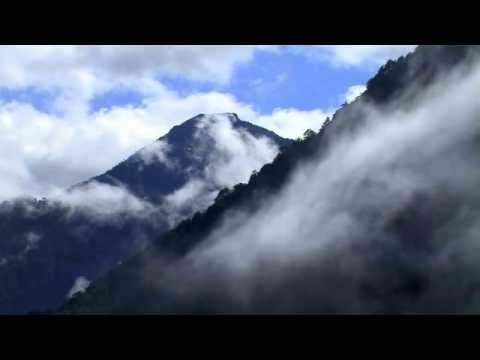 Naturaleza de Anacrusa Letra y Video