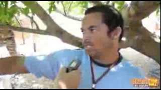Seis pessoas suspeitas de participar de 'briga de galos' são presas pelo GTE